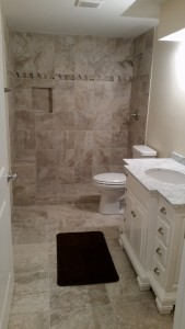 TL Renovation- Basement Bathroom